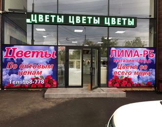 Широкоформатная печать на самоклейке — закажите оформление витрин в Оренбурге